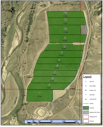 layout of field blocks at Bow and Arrow SDI showing groundwater monitoring sites